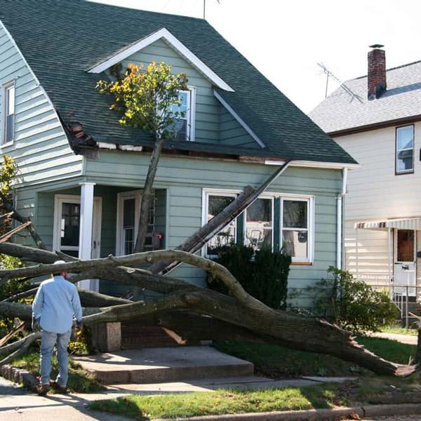 Insurance & Property Damage